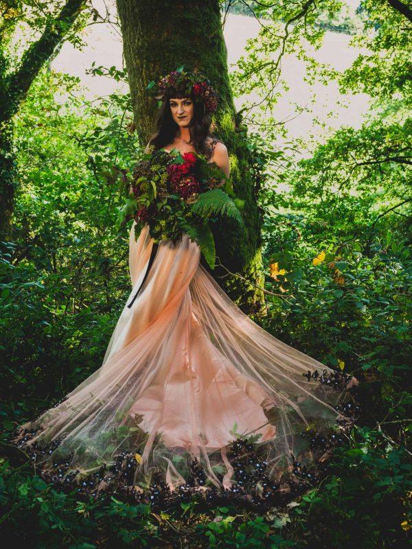 A Hidden Woodland